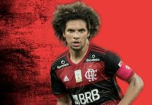 Flamengo Arao